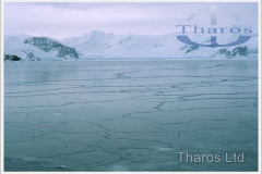 antarctica_sea_ice_forming1